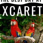 5 Tips to Have The Best Day Ever at Xcaret